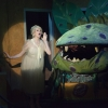 Little Shop of Horrors -12